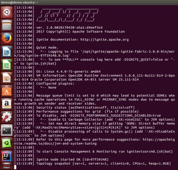 Figure 6. Apache Ignite node running in Docker